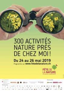 flyer fete nature